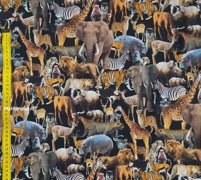 Safari digitaal