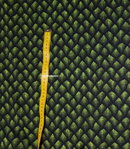 Dragon groen Swafing tricot